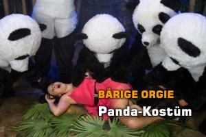 Panda-Bären überall!