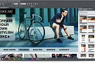 WebDesigner 11