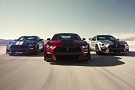 Shelby GT 500 2019