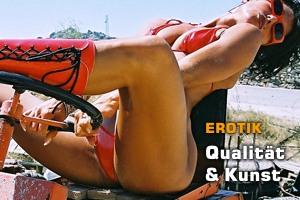 Kunst, Qualität und Erotik