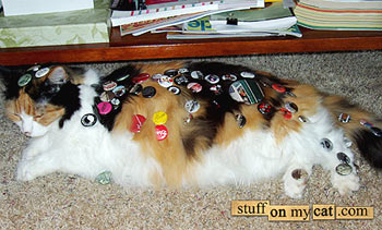 Copyright: Mario Garza - Stuff On My Cat